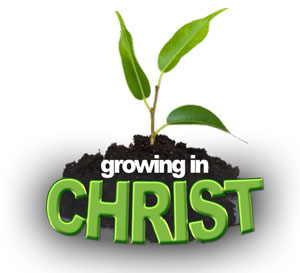 growing in the image of christ my pathways devotional
